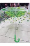 Dáždnik priesvitný